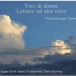 LETTURA AD ALTA VOCE DI VocidiDONNE_5789709258311751110_n